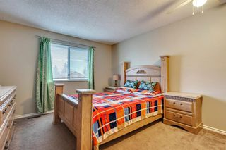 Photo 18: 91 Martinwood Court NE in Calgary: Martindale Detached for sale : MLS®# A1042379
