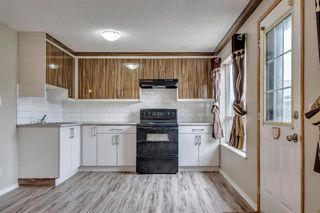 Photo 20: 91 Martinwood Court NE in Calgary: Martindale Detached for sale : MLS®# A1042379