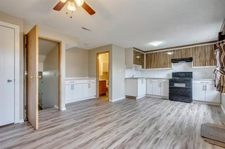 Photo 23: 91 Martinwood Court NE in Calgary: Martindale Detached for sale : MLS®# A1042379