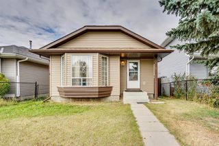 Photo 35: 91 Martinwood Court NE in Calgary: Martindale Detached for sale : MLS®# A1042379