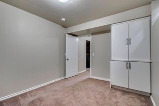 Photo 32: 91 Martinwood Court NE in Calgary: Martindale Detached for sale : MLS®# A1042379