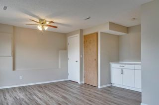 Photo 26: 91 Martinwood Court NE in Calgary: Martindale Detached for sale : MLS®# A1042379