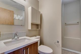 Photo 28: 91 Martinwood Court NE in Calgary: Martindale Detached for sale : MLS®# A1042379