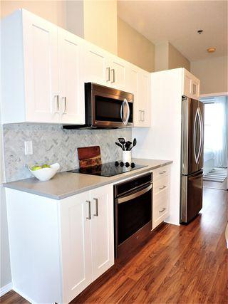 Photo 11: 450 4827 104A Street in Edmonton: Zone 15 Condo for sale : MLS®# E4173142