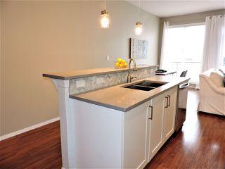 Photo 13: 450 4827 104A Street in Edmonton: Zone 15 Condo for sale : MLS®# E4173142