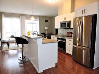 Photo 10: 450 4827 104A Street in Edmonton: Zone 15 Condo for sale : MLS®# E4173142