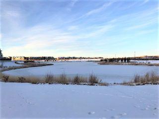 Photo 8: 3057 Carpenter Landing in Edmonton: Zone 55 House for sale : MLS®# E4182603