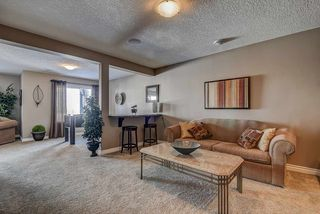 Photo 38: 439 Cascade Crescent: Sherwood Park House for sale : MLS®# E4189524