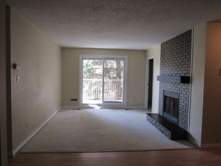 Photo 6: 101, 24 Alpine Place in St. Albert: Condo for rent