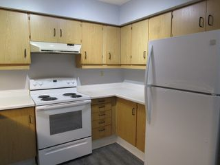 Photo 3: 101, 24 Alpine Place in St. Albert: Condo for rent