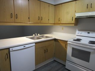 Photo 4: 101, 24 Alpine Place in St. Albert: Condo for rent