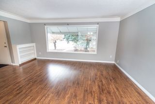 Photo 3: 7902 83 Avenue in Edmonton: Zone 18 House for sale : MLS®# E4214712