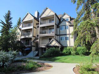 Photo 1: 9031 Tudor Glen in St. Albert: Condo for rent