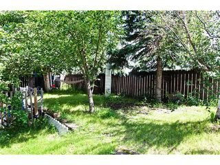 Photo 20: 3611 10 AV in EDMONTON: Zone 29 Residential Detached Single Family for sale (Edmonton)  : MLS®# E3271235