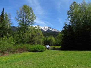 Photo 2: 18405 S 5 Highway in Valemount: Valemount - Rural South Land for sale (Robson Valley (Zone 81))  : MLS®# R2401729