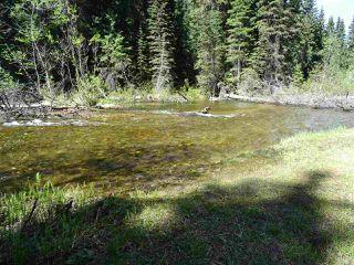 Photo 3: 18405 S 5 Highway in Valemount: Valemount - Rural South Land for sale (Robson Valley (Zone 81))  : MLS®# R2401729