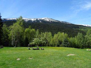 Photo 4: 18405 S 5 Highway in Valemount: Valemount - Rural South Land for sale (Robson Valley (Zone 81))  : MLS®# R2401729