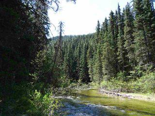 Photo 1: 18405 S 5 Highway in Valemount: Valemount - Rural South Land for sale (Robson Valley (Zone 81))  : MLS®# R2401729