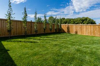 Photo 29: 16711 18 Avenue in Edmonton: Zone 56 House for sale : MLS®# E4172613