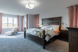 Photo 18: 16711 18 Avenue in Edmonton: Zone 56 House for sale : MLS®# E4172613