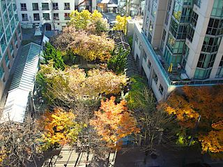 "Photo 2: 1105 1189 HOWE Street in Vancouver: Downtown VW Condo for sale in ""Genisis"" (Vancouver West)  : MLS®# R2416331"