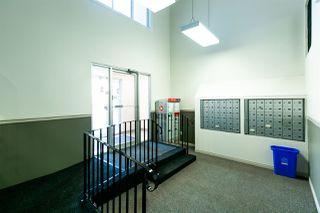 Photo 20: 224 15105 121 Street in Edmonton: Zone 27 Condo for sale : MLS®# E4180586