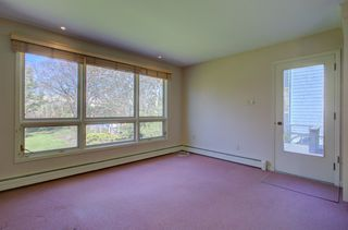 Photo 12: 1140 Studley Avenue in Halifax: 2-Halifax South Residential for sale (Halifax-Dartmouth)  : MLS®# 202008117