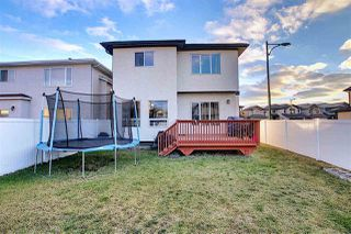 Photo 32: 5324 164 Avenue NW in Edmonton: Zone 03 House for sale : MLS®# E4219536