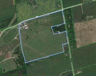Photo 2: 387498 Mono Centre Road in Mono: Rural Mono House (Bungalow) for sale : MLS®# X4991812