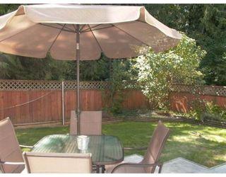 Photo 8: 24294 100B AV in Maple Ridge: House for sale : MLS®# V664047