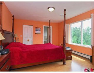 Photo 6: 15222 81A Avenue in Surrey: Fleetwood Tynehead House for sale : MLS®# F2815844