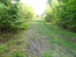 Main Photo: Lot M Cedar Drive: Blind Bay lot for sale (Shuswap)  : MLS®# 9214720