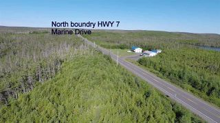 Photo 9: Lot 03-1A Highway 7 in Marie Joseph: 303-Guysborough County Vacant Land for sale (Highland Region)  : MLS®# 201917799