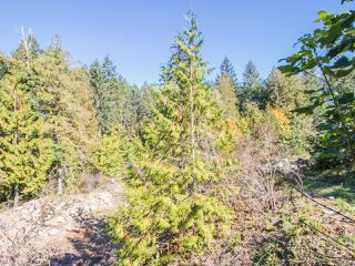 Photo 15: LOT 3 Extension Rd in NANAIMO: Na Extension Land for sale (Nanaimo)  : MLS®# 830669