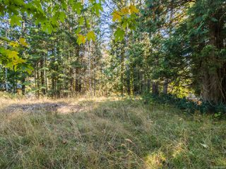 Photo 7: LOT 3 Extension Rd in NANAIMO: Na Extension Land for sale (Nanaimo)  : MLS®# 830669