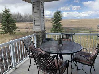 Photo 41: 54505 Rge. Rd. 280: Rural Sturgeon County House for sale : MLS®# E4192819