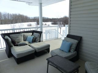 Photo 39: 54505 Rge. Rd. 280: Rural Sturgeon County House for sale : MLS®# E4192819