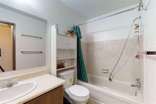 Photo 18: 7340 181 Street in Edmonton: Zone 20 House for sale : MLS®# E4174601