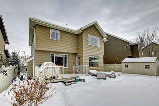 Photo 38: 2550 CAMERON RAVINE Landing in Edmonton: Zone 20 House for sale : MLS®# E4186596