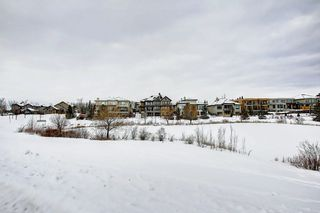 Photo 41: 2550 CAMERON RAVINE Landing in Edmonton: Zone 20 House for sale : MLS®# E4186596