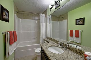Photo 29: 2550 CAMERON RAVINE Landing in Edmonton: Zone 20 House for sale : MLS®# E4186596