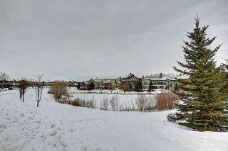 Photo 39: 2550 CAMERON RAVINE Landing in Edmonton: Zone 20 House for sale : MLS®# E4186596