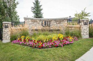Photo 43: 3510 WATSON Point in Edmonton: Zone 56 House for sale : MLS®# E4188443