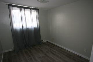 Photo 6: 4 10620 114 Street in Edmonton: Zone 08 Condo for sale : MLS®# E4192130