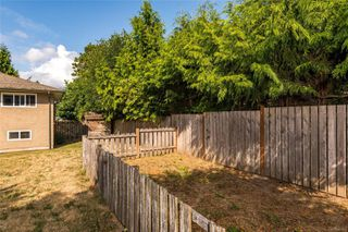 Photo 24: 5143 Santa Clara Ave in : SE Cordova Bay House for sale (Saanich East)  : MLS®# 851992