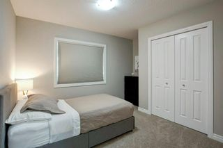 Photo 21: 209 CRANARCH Place SE in Calgary: Cranston Detached for sale : MLS®# A1031672