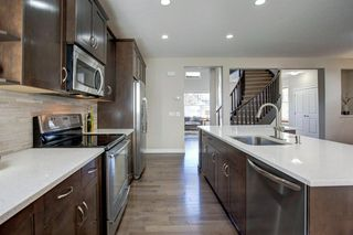Photo 6: 209 CRANARCH Place SE in Calgary: Cranston Detached for sale : MLS®# A1031672