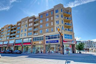 Photo 16: 314 3410 20 Street SW in Calgary: South Calgary Apartment for sale : MLS®# A1048907