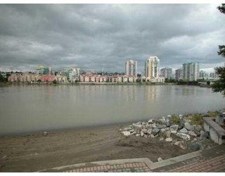 "Photo 6: 411 83 STAR Crescent in New_Westminster: Queensborough Condo for sale in ""RESIDENCE ON THE RIVER"" (New Westminster)  : MLS®# V662719"