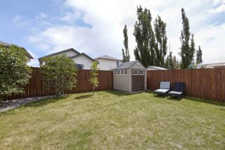 Photo 9: 16761 118 Street in Edmonton: Zone 27 House for sale : MLS®# E4173092
